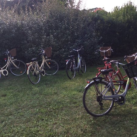 Bike Factory