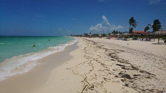 Cayo Coco, Kuba: DSC_0512_large.jpg