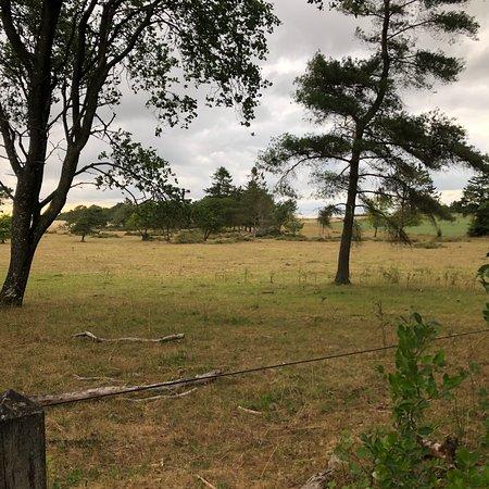 Osterbolle Oldtidsboplads
