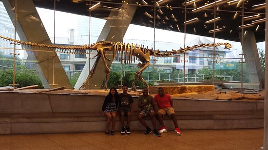 Perot Museum of Nature and Science: Perot Museum of Nature and Science