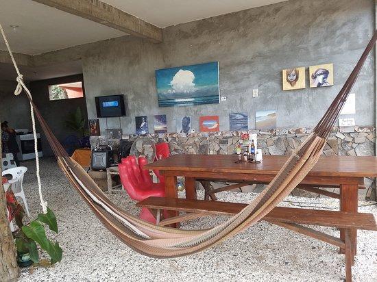 El Burro en Primavera: Hammock in the dining area.