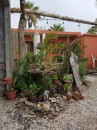 El Burro en Primavera: entry area