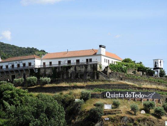 Folgosa, Portugal: Vista do rio Douro