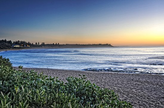 Bateau Bay, Australien: Dawn looking from 20 metres from where vans are parked down Shelley Beach