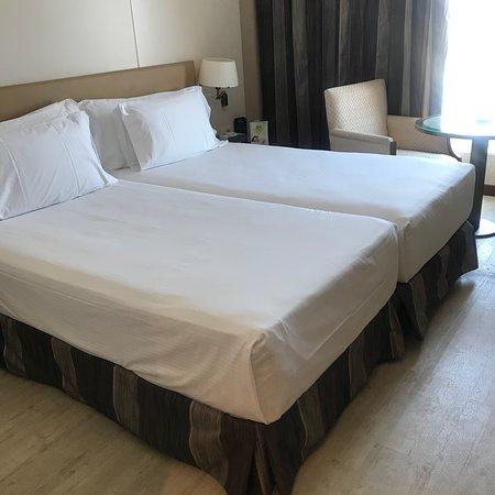 Sercotel Sorolla Palace Hotel : photo2.jpg