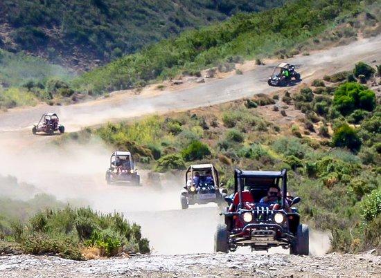 La Cala de Mijas, Spain: Mijas buggys , outback of La Cala
