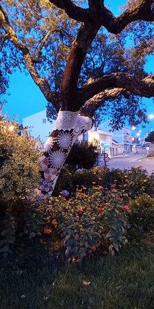 Historic Center of Cercal do Alentejo: IMG20180802210044_large.jpg