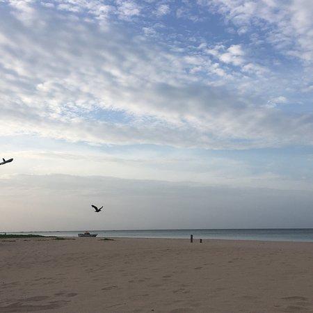 Gurudeniya, Srí Lanka: photo4.jpg