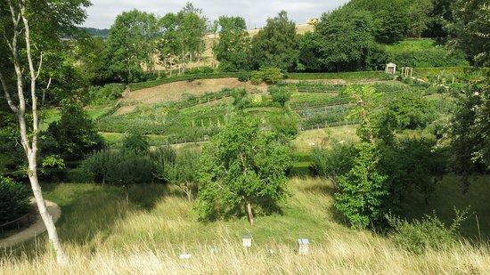 Painswick Rococo Garden: Views of Rococo.
