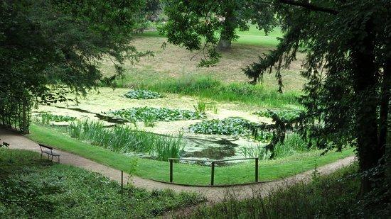 Painswick Rococo Garden: The Pond.