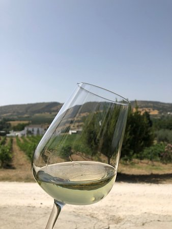 Bodega García Hidalgo: Wine tasting