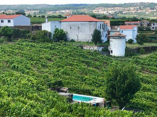 Jorge Barefoot - Wine & Tours: Barefoot Jorge Wine & Tours