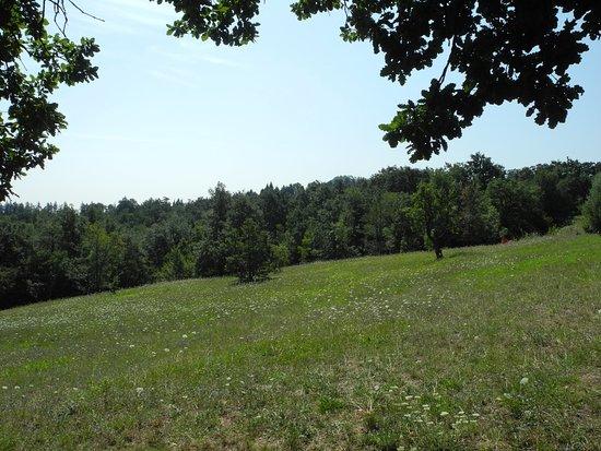 Parco Cavaioni