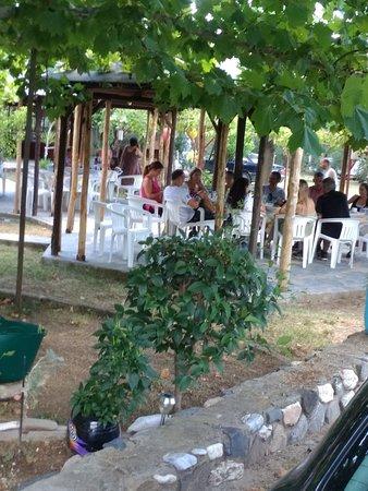 Vatopedi, Hellas: Ταβέρνα Τσιπουράδικο Δήμητρα