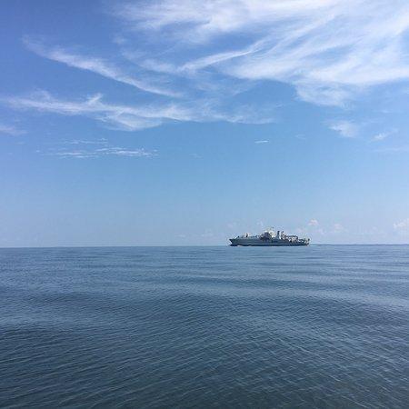 Port Republic, MD: photo2.jpg
