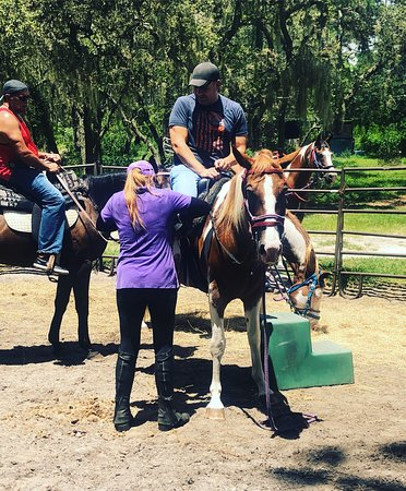 Mustang Moon Equine Solutions: Almost ready