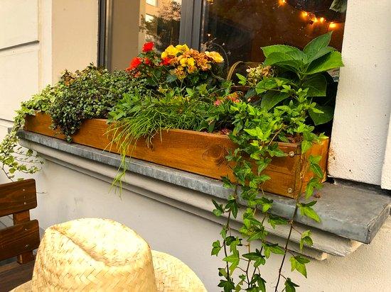 Üppig bestückter Blumenkasten im Fenster - Picture of Anh Ba, Berlin ...