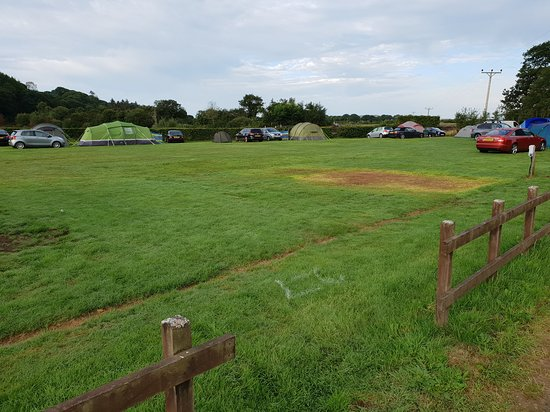 Talsarnau, UK: Rammed, with a row of tents down the middle, apparently