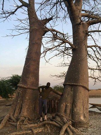 Senegal: l embouchure du Sénégal