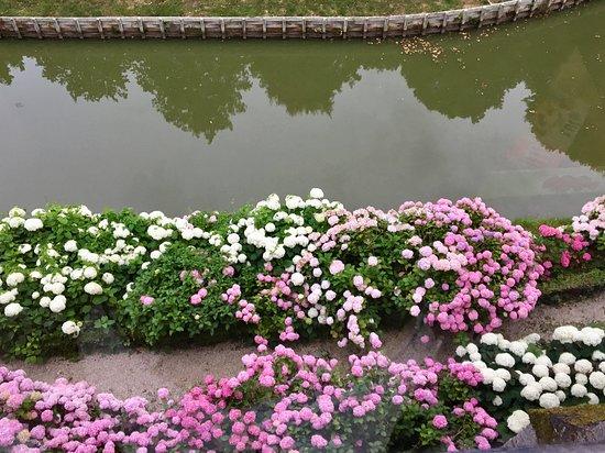 Colombieres, França: gardens