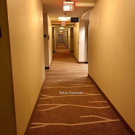 Hilton Garden Inn Uniontown: photo6.jpg