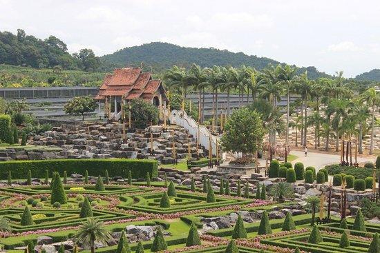 IMG-20180117-WA0278_large.jpg - Picture of Nong Nooch Tropical Botanical Garden, Pattaya
