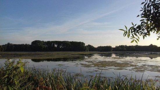 Kinewell Lakes