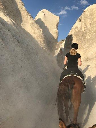 Lucky Horse Ranch照片