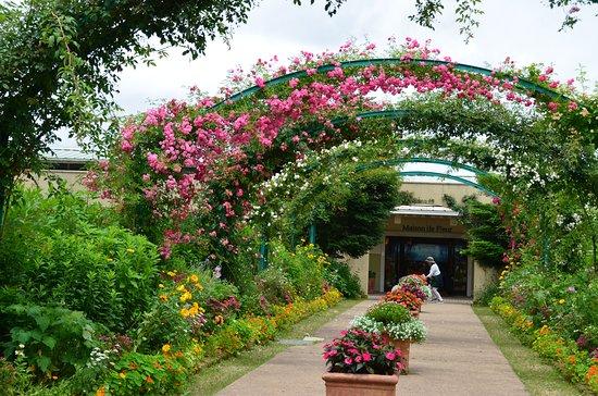 花园美术馆比叡