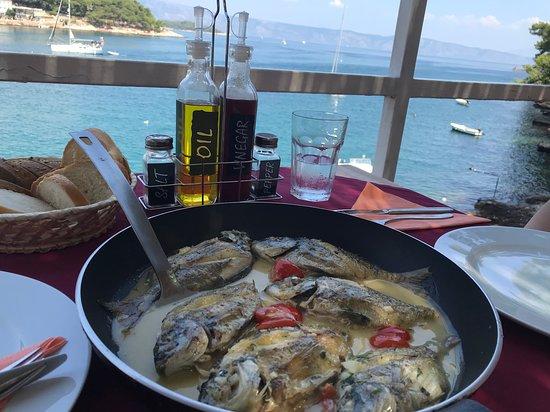 Paradiso Restaurant Photo