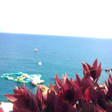BLM Beach Photo