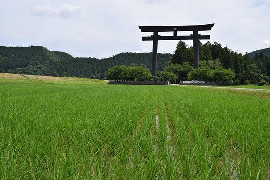 Pension Ashitanomori: Hongu's main torii is majestic in the rice fields