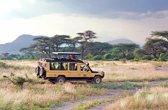 African Horizons
