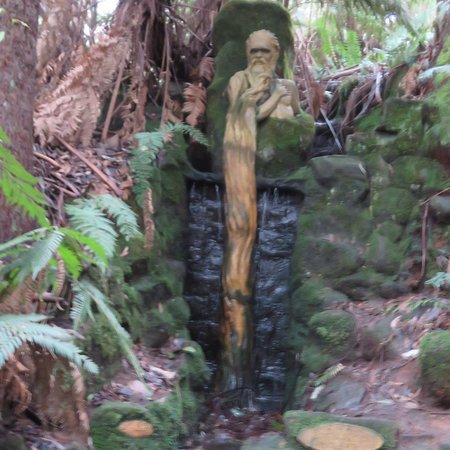 Mount Dandenong, Avustralya: photo2.jpg