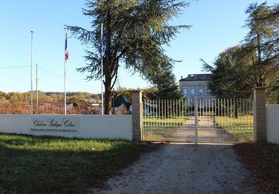 Chateau Lartigue Cèdres