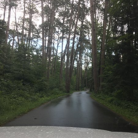 Wilderness Drive: photo1.jpg