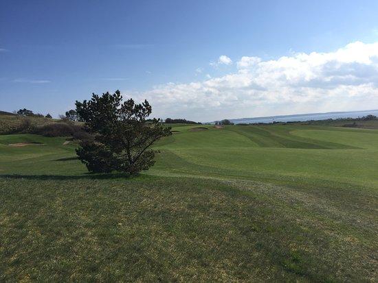 Kalundborg Golfklub-billede