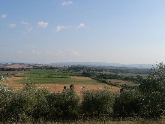Montaperti, Ιταλία: Vistas de la Toscana desde la Villa Brignole