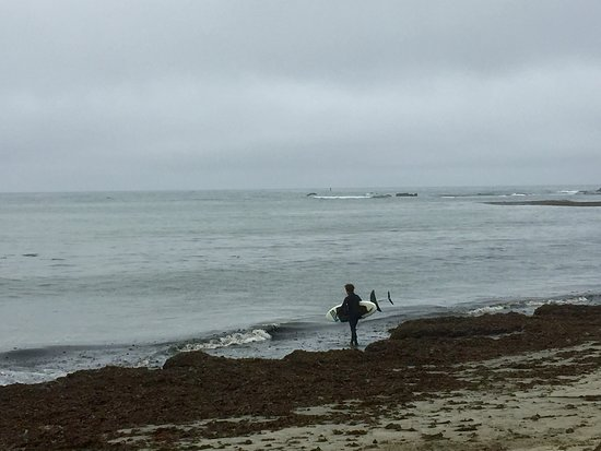 Mavericks : Surfer getting ready for some chilly water and a paddle to the waves