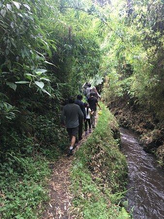 Pasochoa Forest Reserve : Rutas autoguiadas