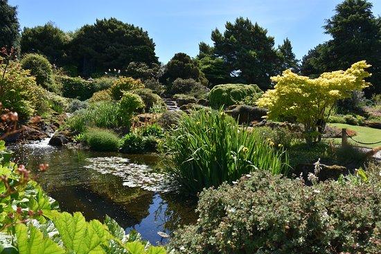 Royal Botanic Gardens - Picture of Royal Botanic Garden Edinburgh ...