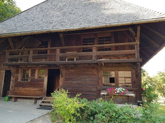 Black Forest Open Air Museum Vogtsbauernhof: 20180802_163706_large.jpg