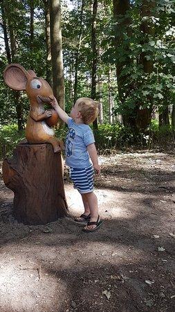 Thetford Forest Park: 20180806_145407_large.jpg