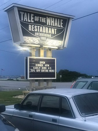 Tale of The Whale Picture