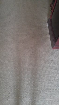 Rahway, NJ: dirty stained carpet