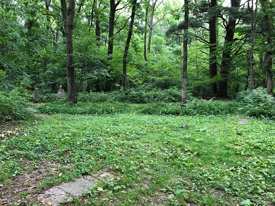 Old gravesite at the top of a hill about a mile past historic forestville. Maps available.