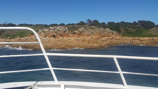 Cowes, Australia: One of the many amazing views