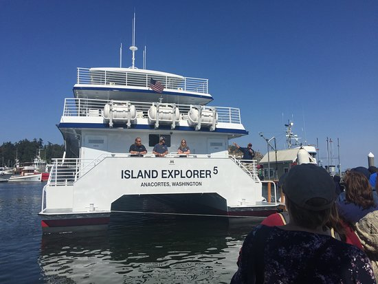 Island Adventures صورة