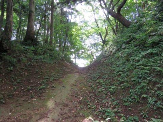 Joetsu, Japan: 薬研堀