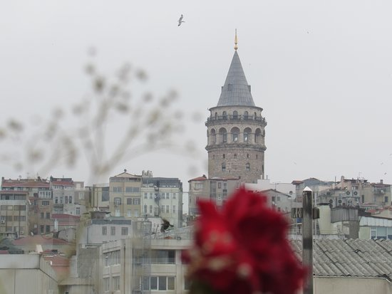 Istanbul Golden City Hotel: Galata tower from hotel rooftop